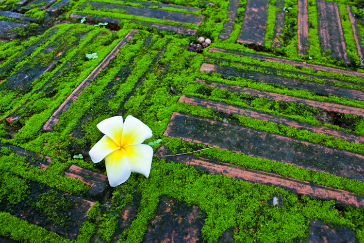 Дорожки рядом с храмом Хо Пха Кео