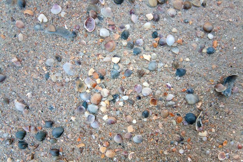 Пляжи-Краби-41